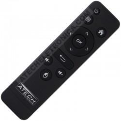 Controle Remoto Smart TV Box Tomate MCD-118 / MCD-119 / MCD-121